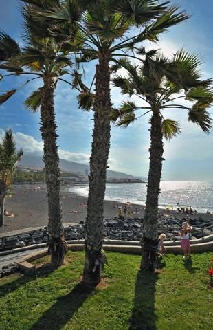 Sol Puerto de la Cruz Tenerife