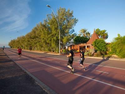 IFA Altamarena - sport