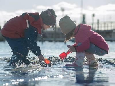 Ostsee Resort Damp (Ferienhäuser) - kinder