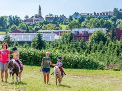 Familienhotel Reiterhof Runding - sport