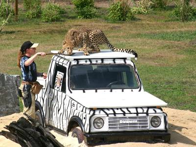 Safariland Stukenbrock Erlebnisresort - unterhaltung