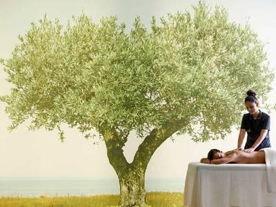 Cavo Olympo Luxury Hotel & Spa - wellness
