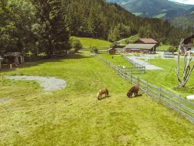Hotel Wolkensteinbär powered by Magic Mountains - lage